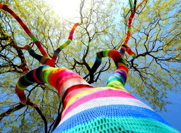 Tree yarnbombing