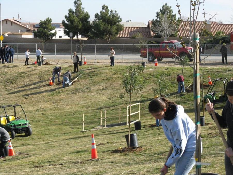 "More than 80 volunteers participated in last month's ""Semester of Service"" tree planting event at Arnie Quinones Park in Palmdale."