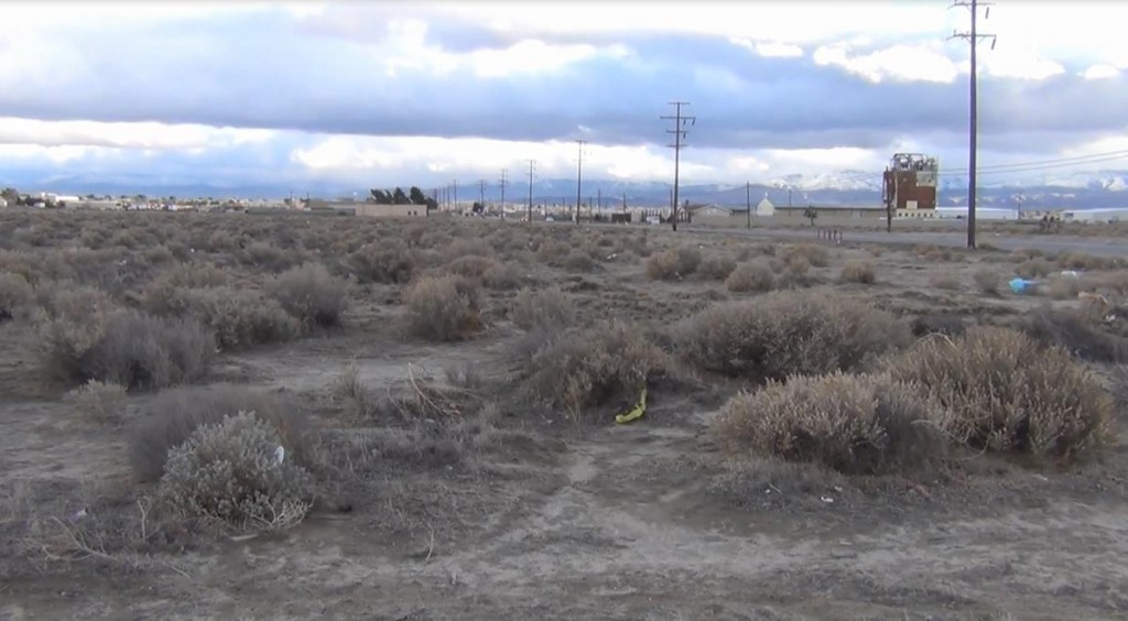 A partial skeleton was found Thursday evening in this desert field near the intersection of Division Street and East Avenue H in Lancaster. Authorities are working to identify the remains. (Photo by LUIS MEZA)